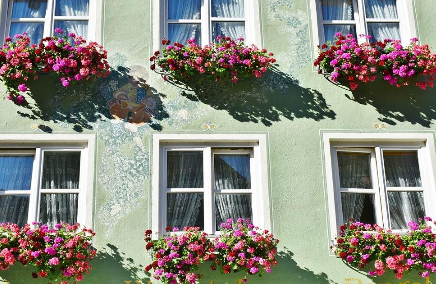 Fachadas con flores - Plantas exterior mucho sol ...